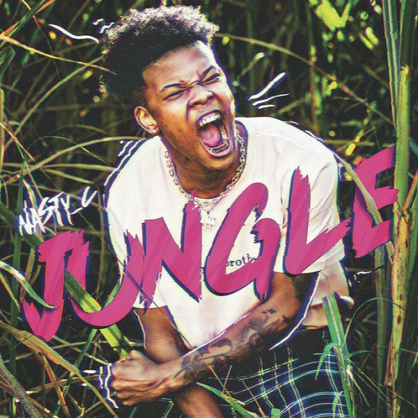Video Nasty C Jungle All Naija Entertainment